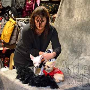 Malucchi, la bijouterie pour chien