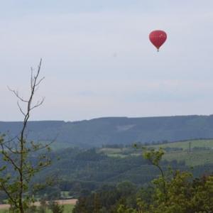 Vol en Montgolfiere en Belgique - 7879