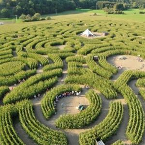 le labyrinthe de la sorcière