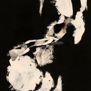 Annwyn Annie Rousseau