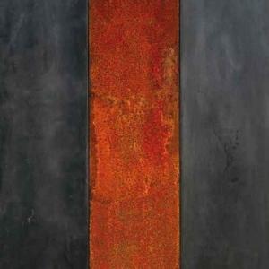 art contemporain - 1 Francois Calvat
