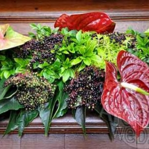 Belgian flower arrangement society -photo 103