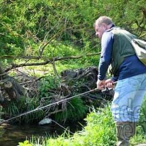 Concours de pêche à la truite sur la Wiltz