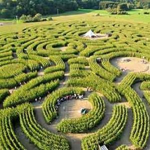 Les extraterrestres au Labyrinthe