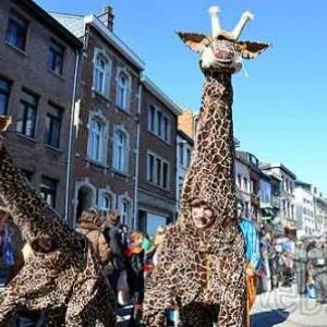Pat'Carnaval Bastogne- photo 844