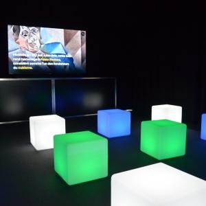 une salle de projection de films dédiés à la peinture moderniste
