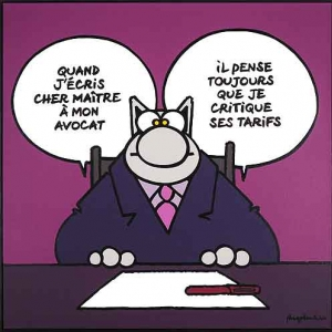 Philippe Geluk expose le Chat