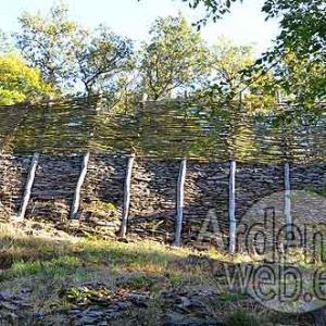 fortification celtique-556