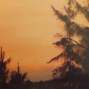 Carine Vermaercke  / Acrylique sur panneau de bois