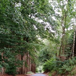 """La descente vers le """"Val d'Arimont"""""""