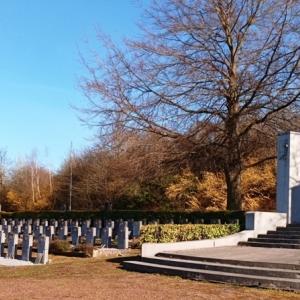 18 ) Le monument « Aux Victimes du Devoir 1914-1918 ». ( Photo F. Detry )