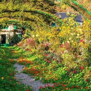 1) Giverny : les nymphéas dans les jardins de Monet et le musée des Impressionismes