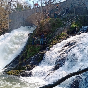 Le débit actuel de la cascade ( photo F. Detry )
