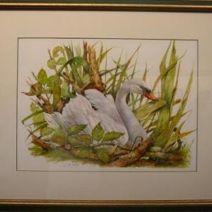 Jean de LEEUW ( Peinture animaliere ) 0494. 07 00 77