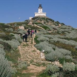 21 Îles Sanguinaires – Pointe de la Parata (Corse)