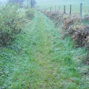 """"""" Le chemin des ecoliers"""" pris en charge par les eleves de Burnenville"""