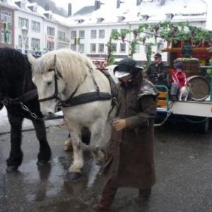 Les chevaux participent egalement