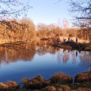La zone humide assez extraordinaire, comprenant un étang et un bras d'eau,