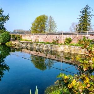 Les étangs de la pisciculture