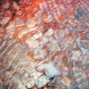 Des milliers de plaques de calcaire