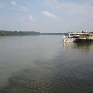 Le Danube a Vukovar