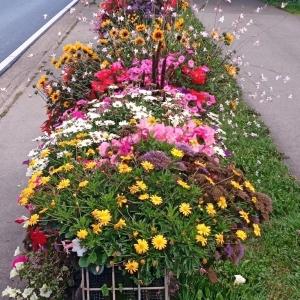 Parcours fleuri