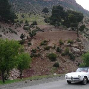 Maroc Classic Alfa Romeo Giuletta de 1965
