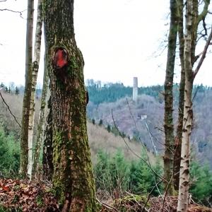Vue sur la cheminée de la centrale de Bévercé ( Photo Detry )