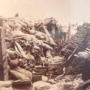 """Exposition : """"1914-1918 - La Guerre du Bois"""""""