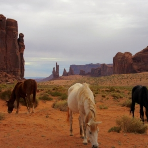 Photo 109   Monument Valley  USA