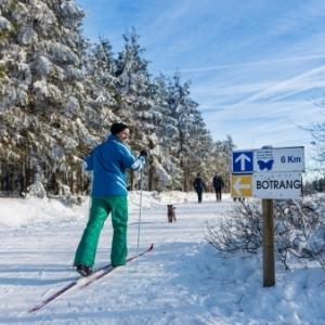 Pour la pratique du ski de fond (ici dans les Hautes Fagnes), une couche de neige de min. 15 cm est nécessaire (©D. Ketz/eastbelgium.com)