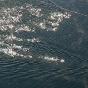Depart de triathlon ( natation )