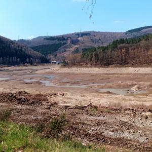 Le lac vide avant travaux  ( photo F. Detry )