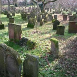 Le Judenfriedhof, le plus grand cimetiere juif d ' Allemagne