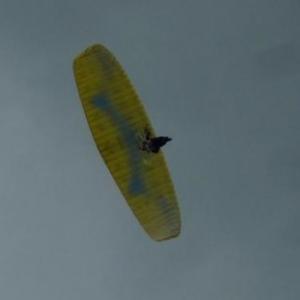 Les parachutistes concurrents