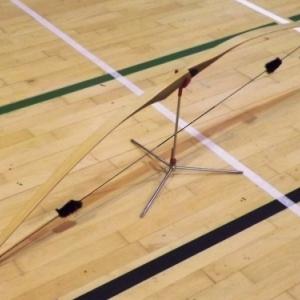 Type d'arc : le longbow