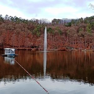 Autour du lac