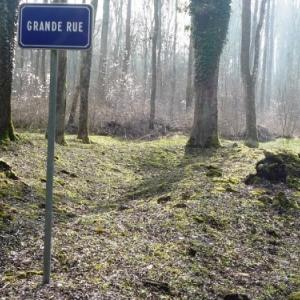 Bezonvaux : les rues du village ( interdiction de quitter le parcours trace DANGER ! )