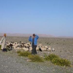 Jeunes bergers sur la route de Toundout