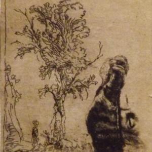 Feuille avec 2 etudes : un arbre et la partie superieure avec la tete de l'artiste portant un bonnet de velours  ( 1638 )