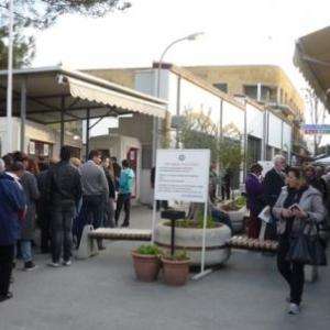 Le passage pietionnier de la rue Ledra ( cote turc