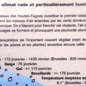 Le climat du Plateau des Hautes Fagnes