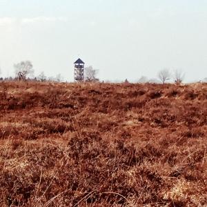 Vue sur la tour panoramique