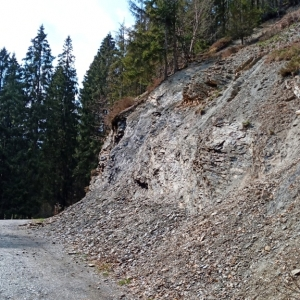 Vallée du Bayehon et son sol schisteux