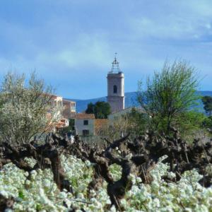 Marseillan ( Photo O.T. Marseillan )