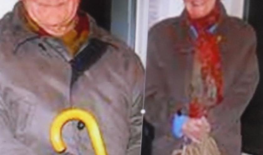 Andre Charles et Nelly Simon, deux temoins oculaires des bombardements disparus il y a peu.