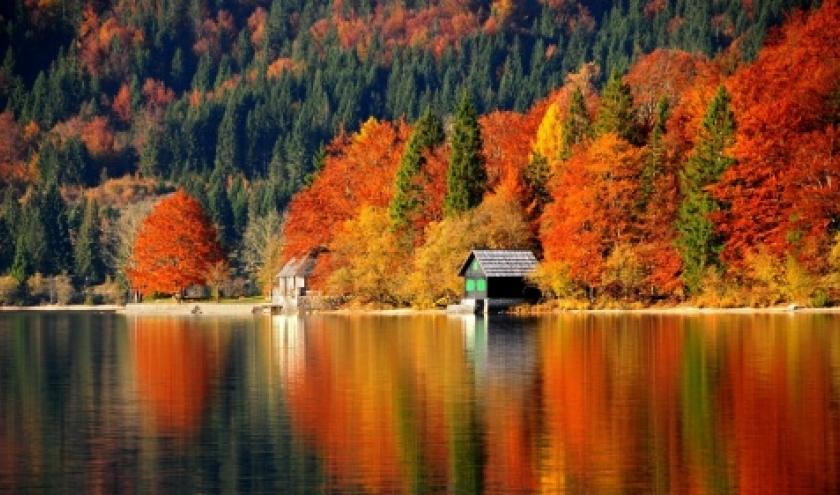 Quand l'automne slovène se pare d'orange. Moment idéal pour y aller.
