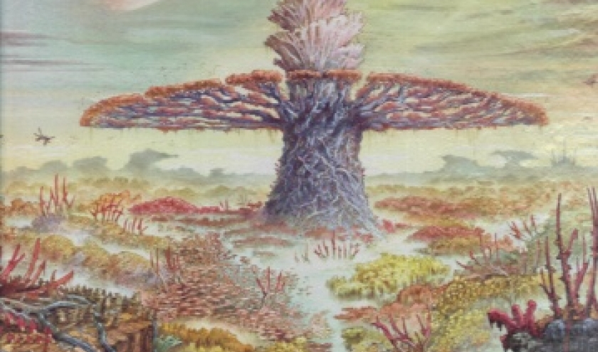 Colonisation - Tome 3. L'arbre matrice.