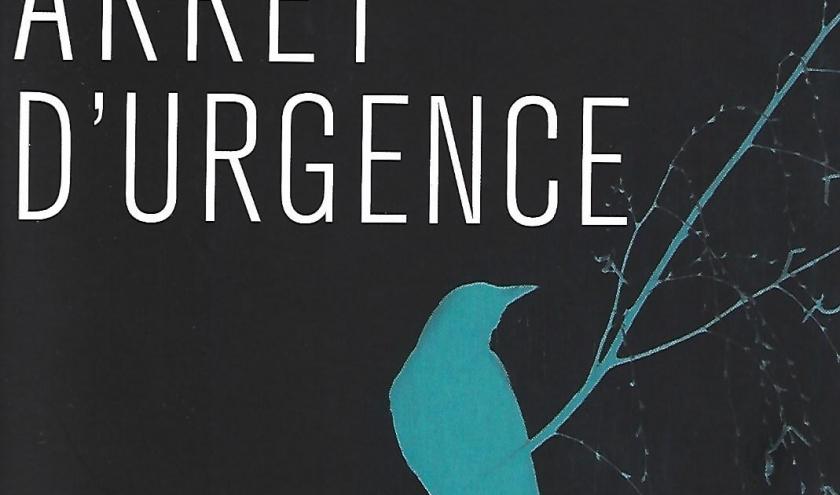 ARRÊT D'URGENCE, polar anglais par Belinda BAUER