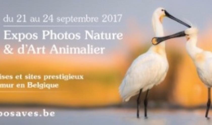 """Expos Photos Nature d' """"AVES"""", à Namur, du 21 au 24 Septembre"""
